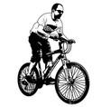 mtb cyclist vector image