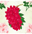 seamless texture flowers red and light pink vector image vector image