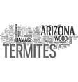 arizona termites text word cloud concept vector image vector image