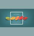 autumn banner backgroundseasonal vector image