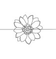 continuous one line drawing flower vector image
