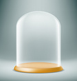 glass dome Stock vector image vector image