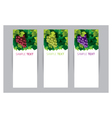 Grape Vine Banner vector image vector image
