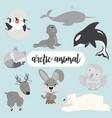 arctic animals cartoon flat style character set vector image vector image