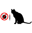 Cat tick vaccination vector image vector image