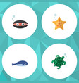 flat icon marine set of tortoise scallop sea vector image vector image