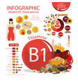 vitamin b1 thiamine vector image vector image