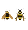 Honey yellow bee fly insect vector image