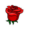 bud of bloody-red rose gorgeous garden flower vector image