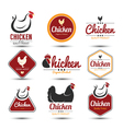 chicken label vector image vector image