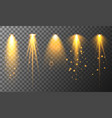 collection different vertical flare light vector image