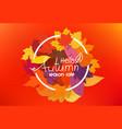 hello autumn season sale concept circle frame vector image