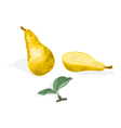 Pear and half of pear with leaves healthy food vector image