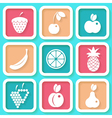 Set of 9 retro icons with fruits vector image