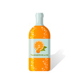 Tangerineade bottle vector image vector image