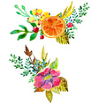 Watercolor flower compositions vector image vector image