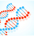 abstract spiral of dna stylish molecule vector image vector image