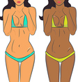 Beautiful woman bodies in bikini vector image vector image