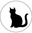 black silhouette of cat in white background vector image vector image