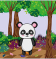 cute panda bear vector image