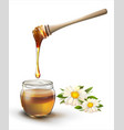 honey and flowers on a white background vector image vector image