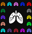 Lungs icon sign Lots of colorful symbols for your vector image vector image