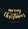 merry christmas card with vector image vector image