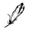one feather bird black silhouette feather vector image vector image