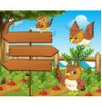 Owl and wooden signs in the vegetable garden vector image vector image