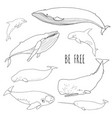 set different whales vector image