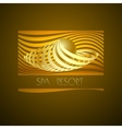 Spa logo symbol icon on brown background vector image