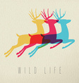 Colorful wild life deer silhouette on paper vector image vector image