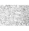 distressed overlay texture of cracked concrete vector image vector image
