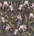hand drawn irises flowers seamless pattern vector image
