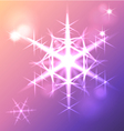 Shining snowflake christmas star vector image