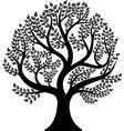 tree isolated on white background vector image vector image