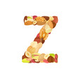 delicious letter made from different nuts z vector image vector image