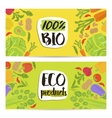 Eco products horizontal flyers set vector image vector image