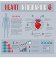 Human Heart Infographics vector image vector image