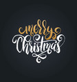 merry christmas lettering calligraphic vector image vector image