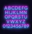 neon pink blue gradient font vector image
