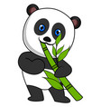 panda eating bamboo on white background vector image vector image