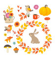 set of cute hand-drawn autumn elements birds and vector image vector image