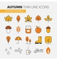 Autumn Thin Line Icons with Umbrella vector image vector image