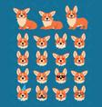 cute welsh corgi constructor vector image