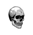 outline skull in black design vector image vector image
