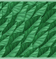 seamless pattern dark green leaves repeating vector image