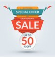 seasonal sale and special offer banner vector image vector image
