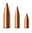 Set of bullets vector image