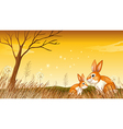 Two bunnies near the grasses vector image vector image